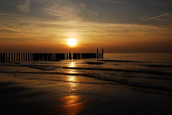 zeeland sundown