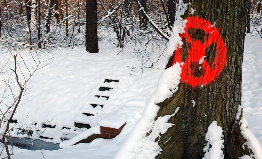 Zeichen im Park