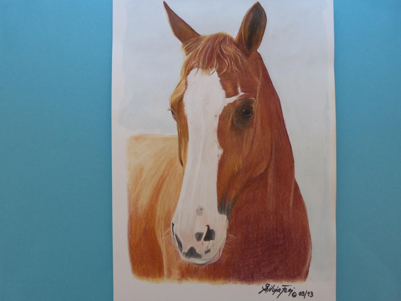 Zeichnung rotes Pferd