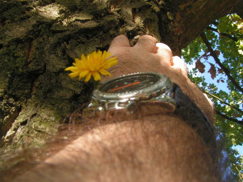 Zeit für die Natur