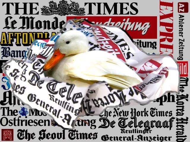 Zeitungsenten sind international
