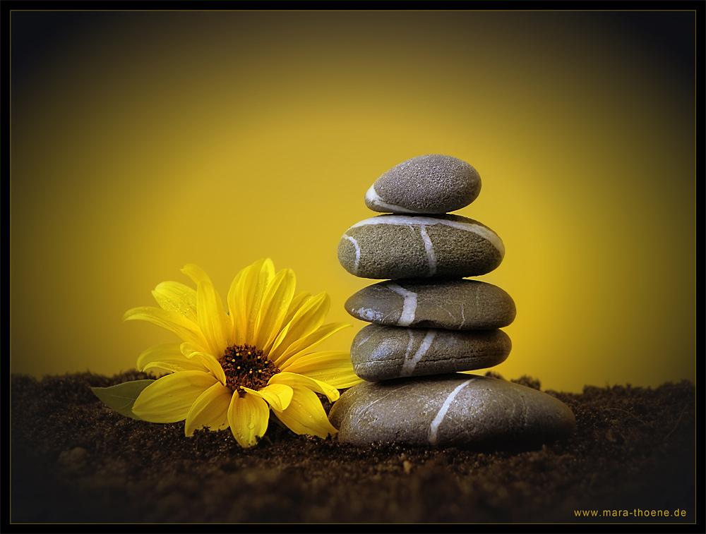 Zen Bilder Kostenlos