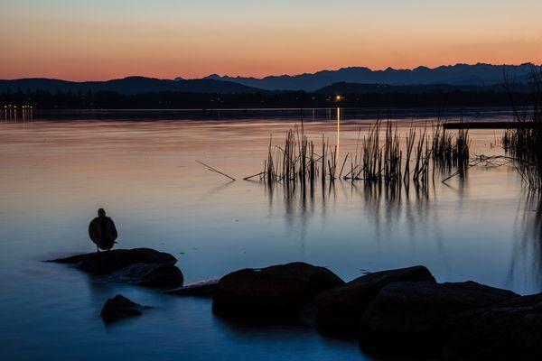 Zen corner of Lake Varese    Angolo zen sul lago di Varese