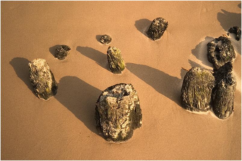 Zen-Garden on the Beach