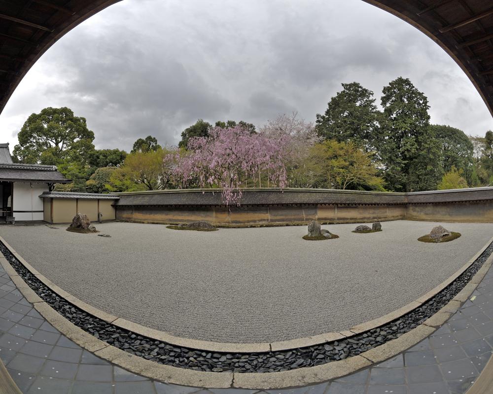 Zen Garten des Ryoan-ji Tempels