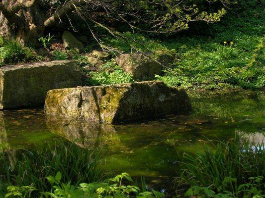 Zen-Garten-Teich