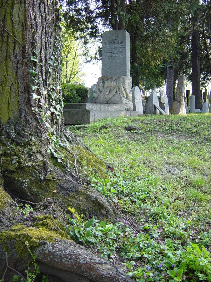 Zentralfriedhof Wien, Jüdischer Teil