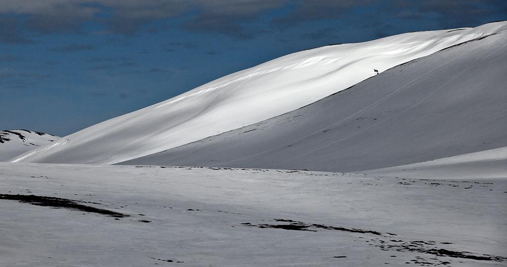 zick zack durch den isländischen Winter - Island #1033