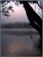 Ziehender Nebel