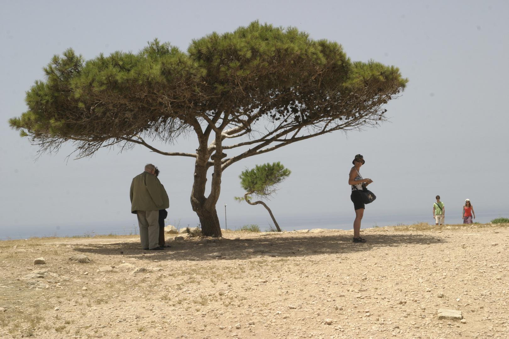 ziemlich heiss in Malta