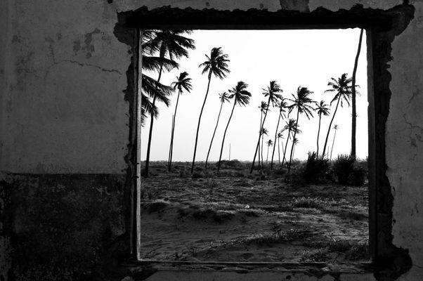 Zimmer mit Blick auf Strand und Palmen