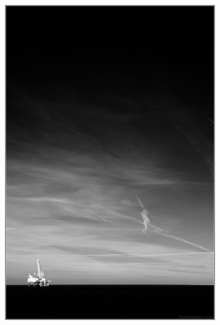 Zimt - Nordsee -