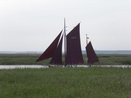 Zingst im Juni 2009
