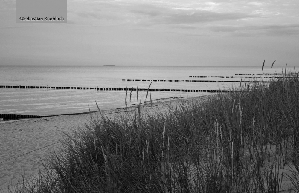 Zingster Strand s/w