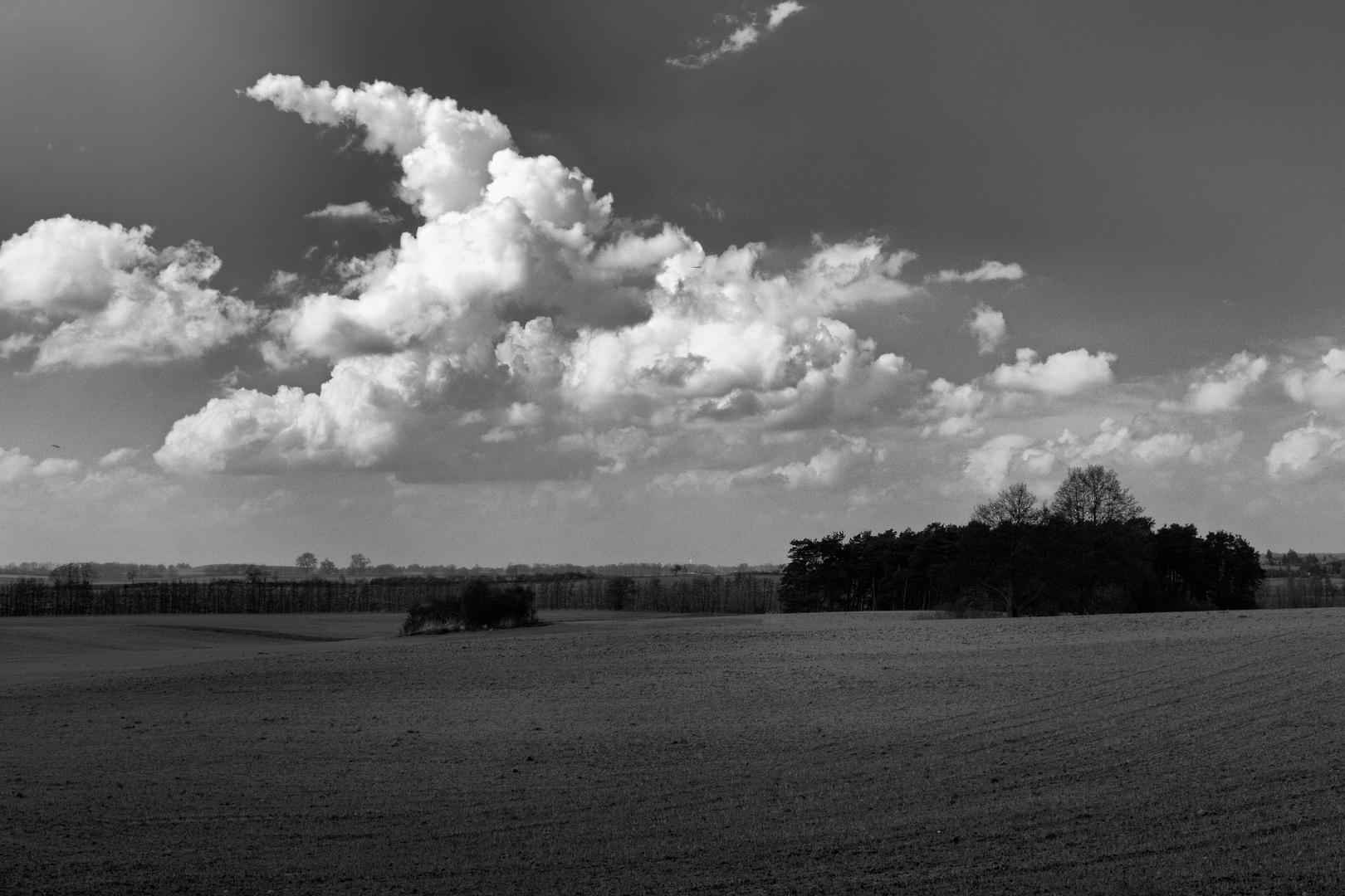 """""""Zipfel - Wolken"""" in der Uckermark"""