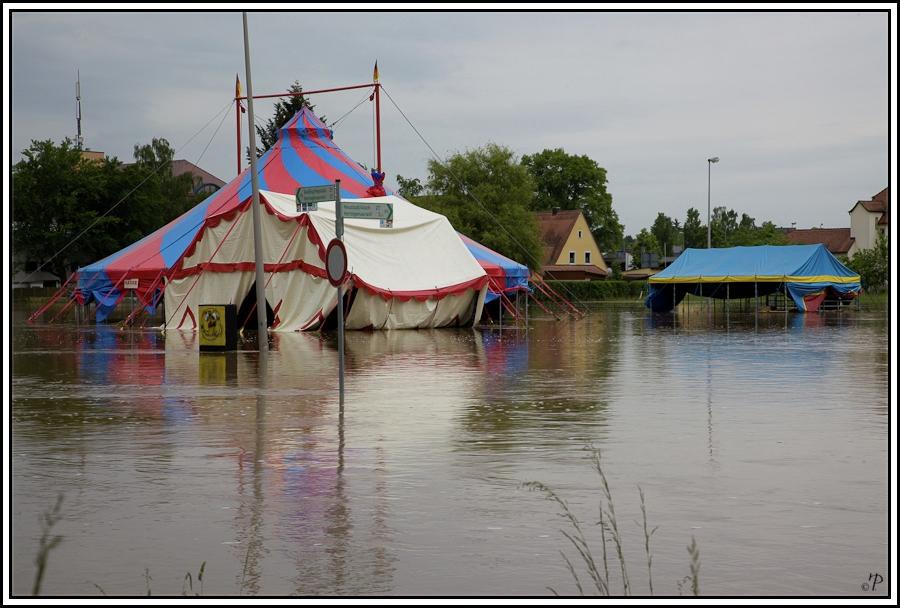 Zirkus im Hochwasser