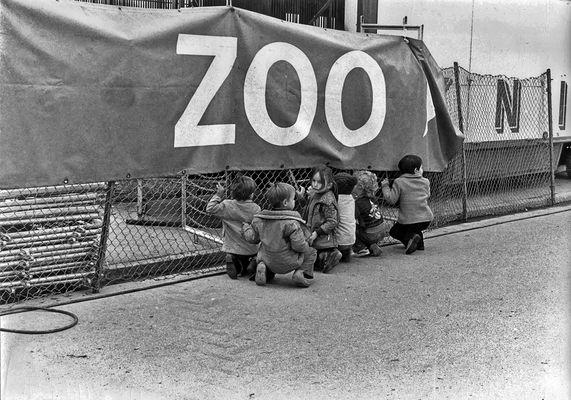 Zirkus und Zoo waren vor 45 Jahren schon spannend