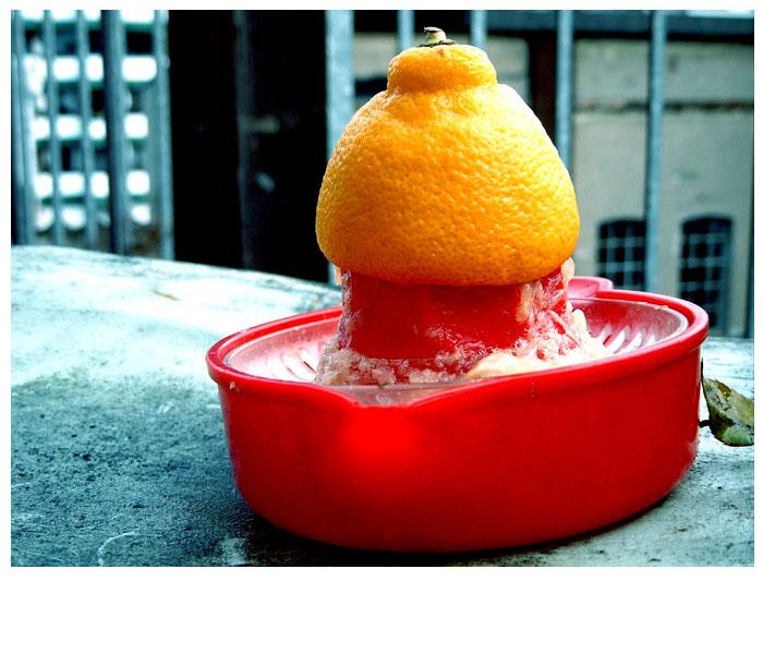 Zitrone,darum!