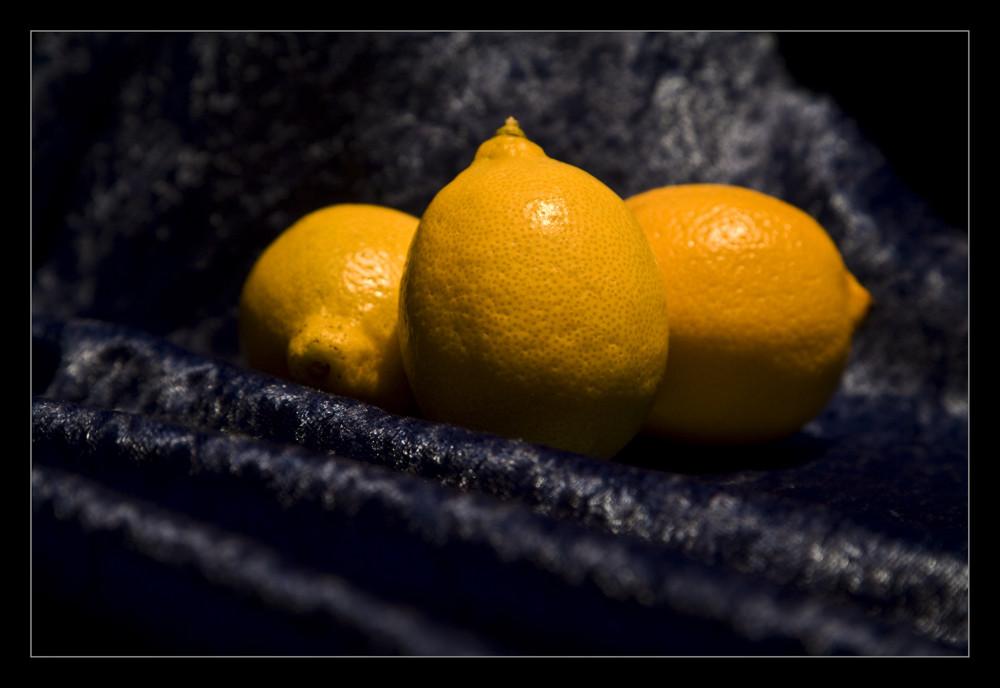 Zitronen 004