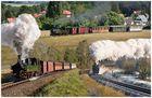 Zittauer Schmalspurbahn (2)