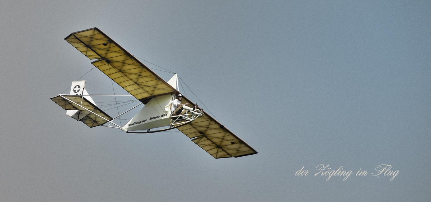 Zögling der Dittinger Segelfluggruppe
