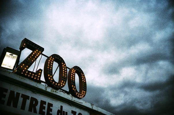 Zoo #1