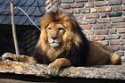 Zoo Duisburg 7