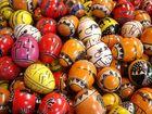 Zoo-Eier