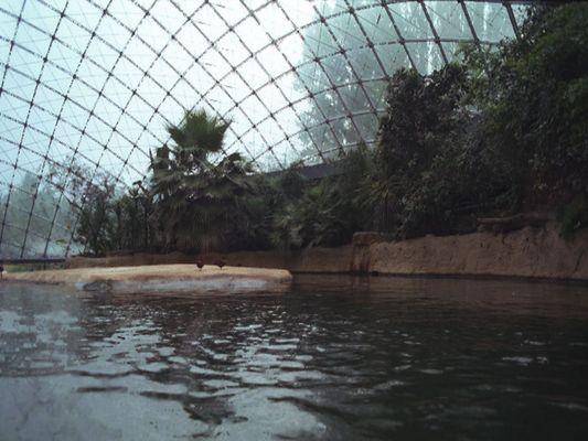 Zookuppel