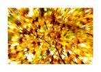 Zoom-Herbstlaub