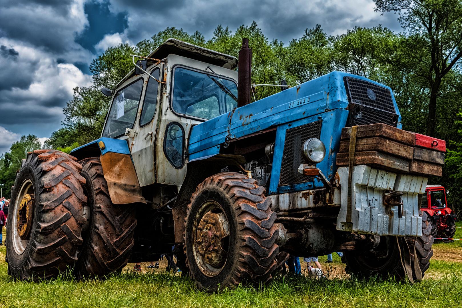 zt 303 d foto bild oldtimer industrie traktor bilder. Black Bedroom Furniture Sets. Home Design Ideas