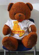 Zu Besuch auf der Euro Teddy 2012 in Essen