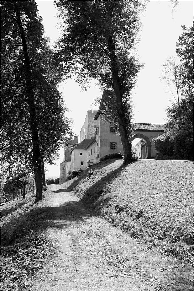 Zu Besuch im Mittelalter - 2