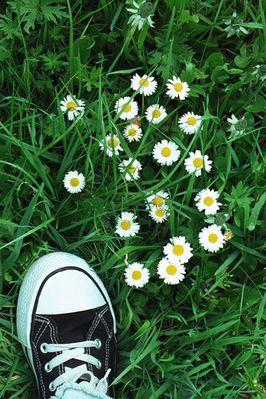 zu Fuß ins Grüne