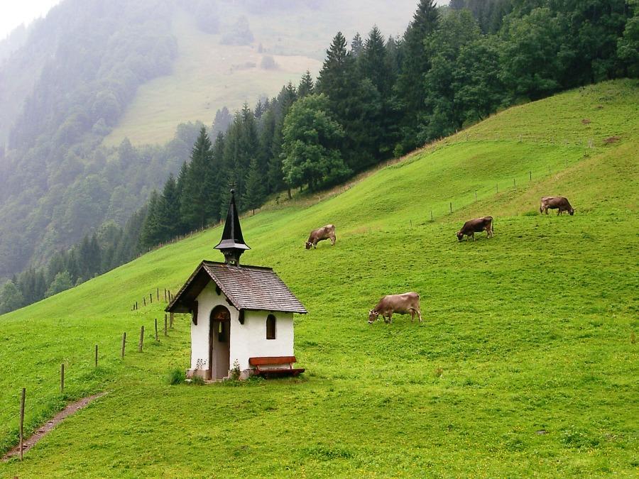 Zu Fuß über die Alpen #9