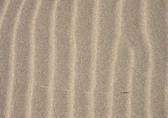 Zu simpel?! oder: Die Dünen von Maspalomas (Aussschnitt)