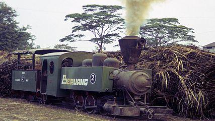 Zuckerfabrik PG Jatiwangi, 02 Beruang, Cirebon (Java, Indonesien), VIW 3042/1916, 12.September1994