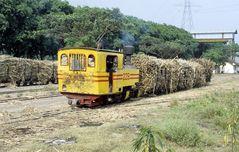 Zuckerfabrik PG Pesantren Baru , Kediri (Java, Indonesien), August 2000
