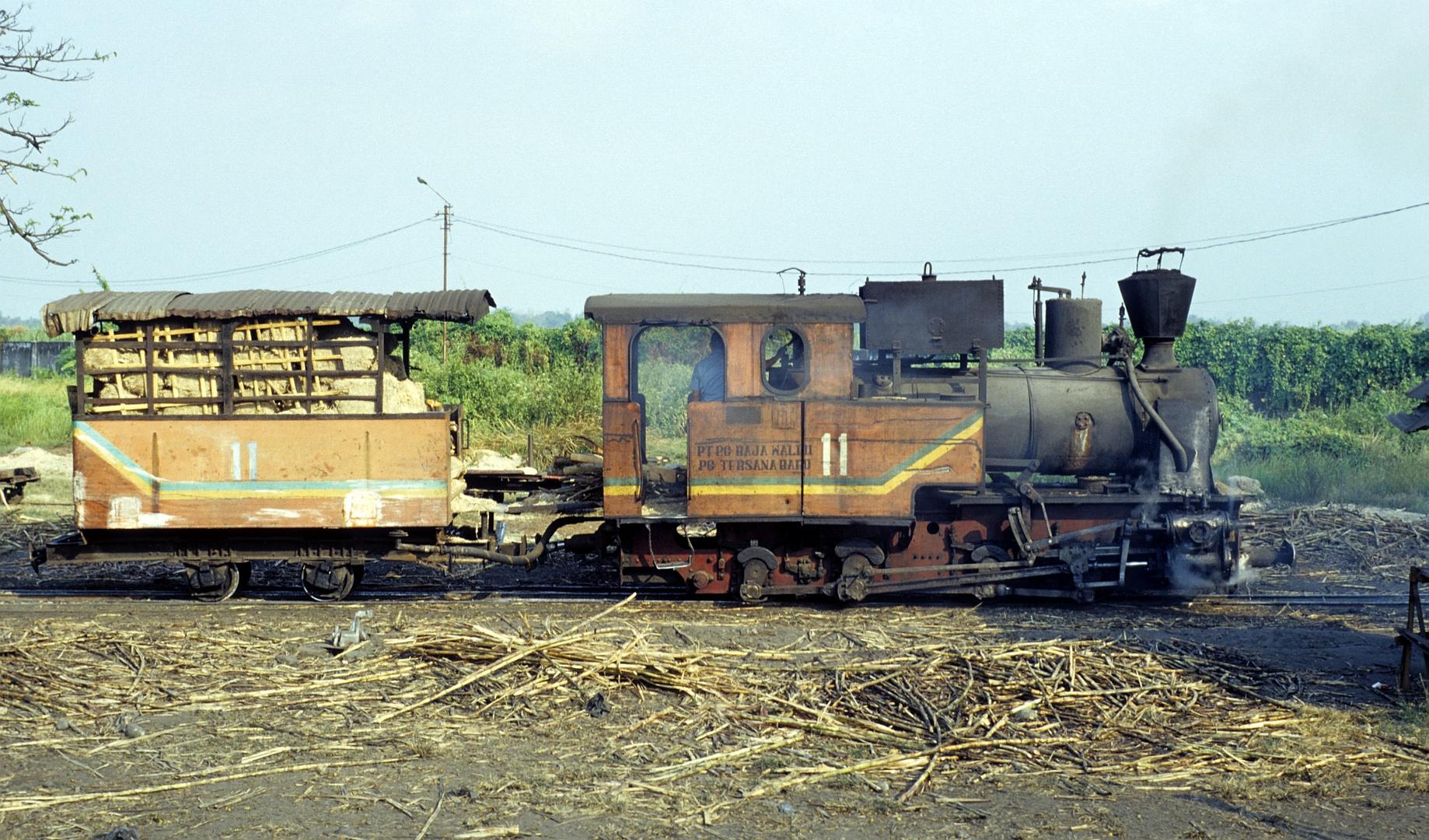 Zuckerfabrik PG Tersana Baru, Losari (Java, Indonesien), Juli 2002