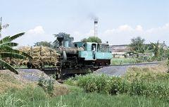Zuckerfabrik PG Wringinanom, 07, Situbondo (Java, Indonesien), September 1999