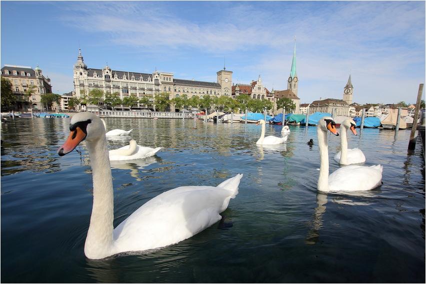 Zürich - An der Limmat
