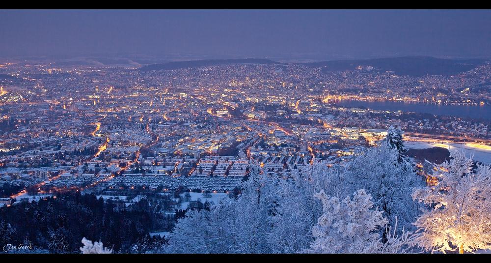 Zürich in der Eiszeit