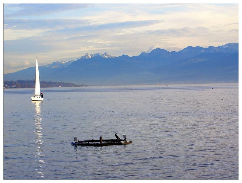 Zürichsee Anfang Dezember