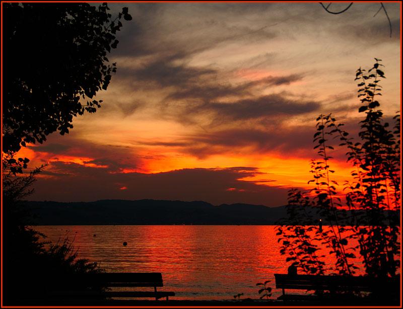 Zürichsee in Rot ...