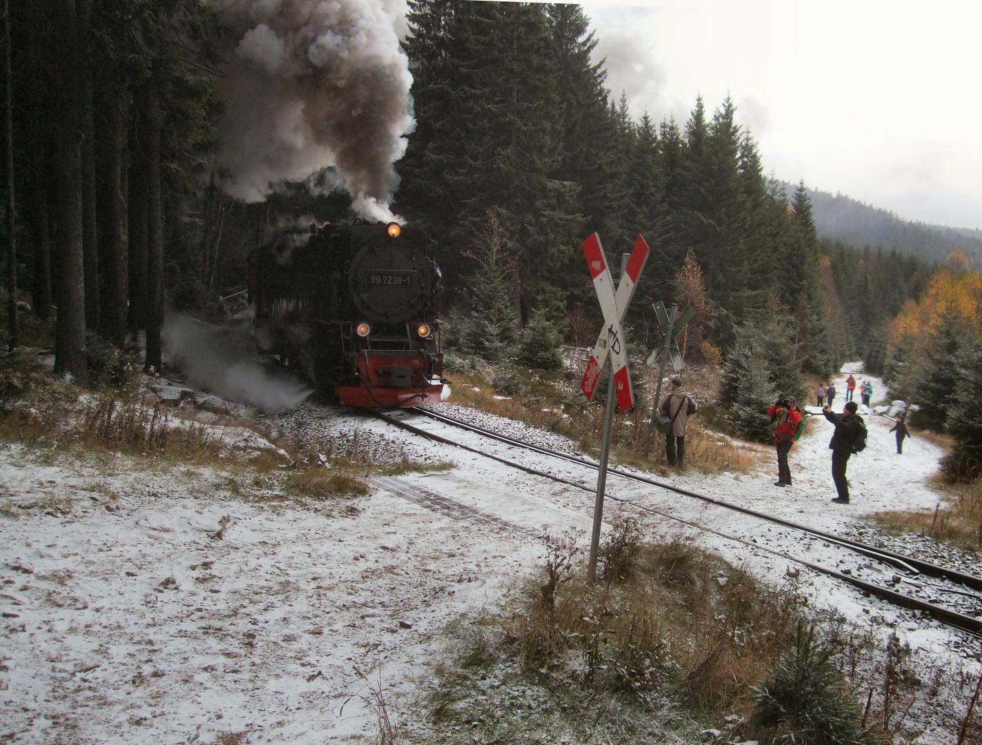 Zug 8933 Wernigerode - Brocken am Bahnübergang der alten Bobbahn in Schierke