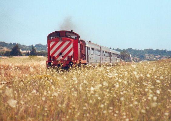 Zug an der Algarveküste bei Lagos