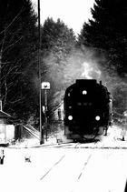 Zug aus dem Wald