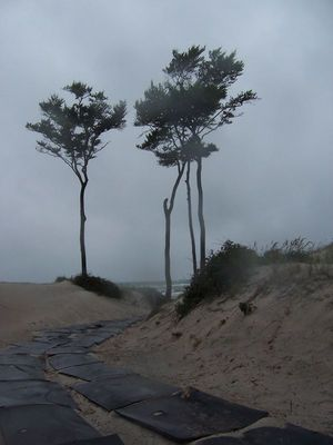 Zugang zum Weststrand bei Windstärke 6