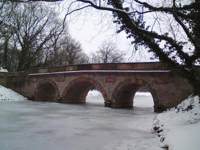 zugefrorener See im Park