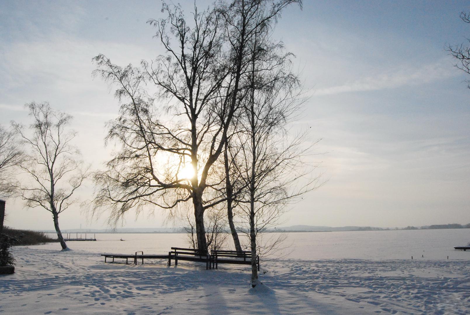 Zugefrorener See in Brandenburg